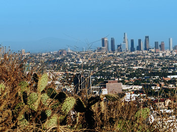 Photo by Camille Didelot-Hearn, 16, Los Angeles Center for Enriched Studies
